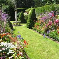 jardineria jardineros en leon guanajuato gto